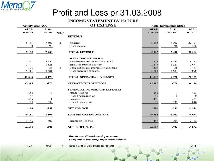 Profit and Loss pr.31.03.2008
