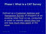 phase i what is a cat survey