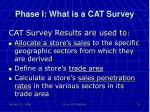 phase i what is a cat survey1