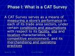 phase i what is a cat survey2