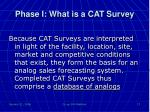 phase i what is a cat survey3