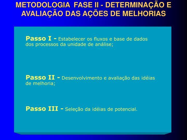METODOLOGIA FASE II - DETERMINAÇÃO E AVALIAÇÃO DAS AÇÕES DE MELHORIAS