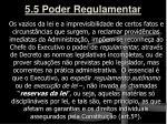 5 5 poder regulamentar1