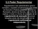 5 5 poder regulamentar2