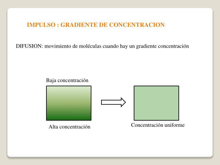 IMPULSO : GRADIENTE DE CONCENTRACION