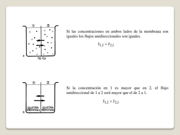 Si las concentraciones en ambos lados de la membrana son iguales los flujos unidireccionales son iguales.