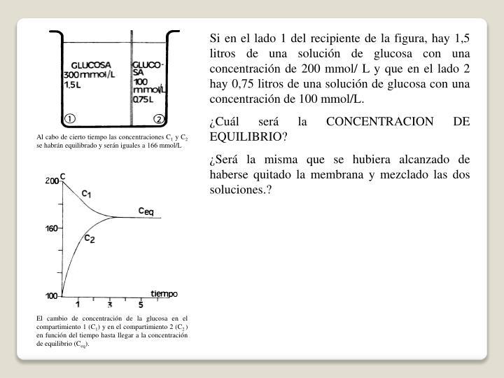 Si en el lado 1 del recipiente de la figura, hay 1,5 litros de una solución de glucosa con una concentración de 200 mmol/ L y que en el lado 2 hay 0,75 litros de una solución de glucosa con una concentración de 100 mmol/L.