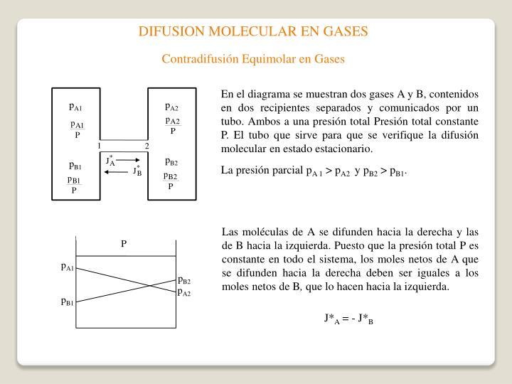 DIFUSION MOLECULAR EN GASES