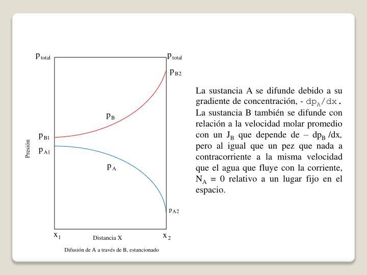 La sustancia A se difunde debido a su gradiente de concentración, -
