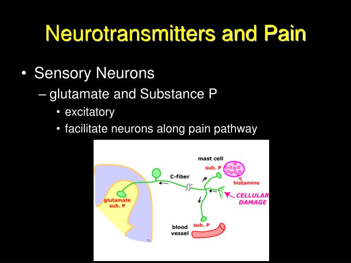 Neurotransmitters and Pain