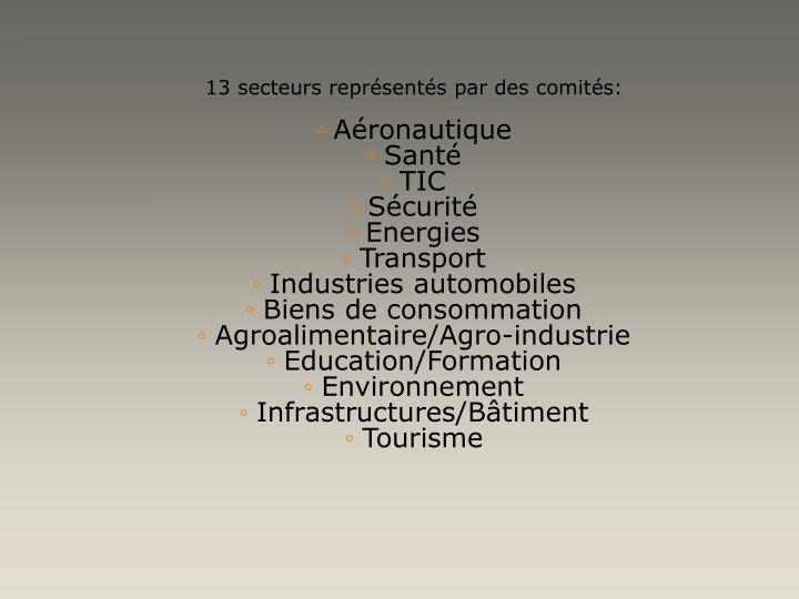13 secteurs représentés par des comités: