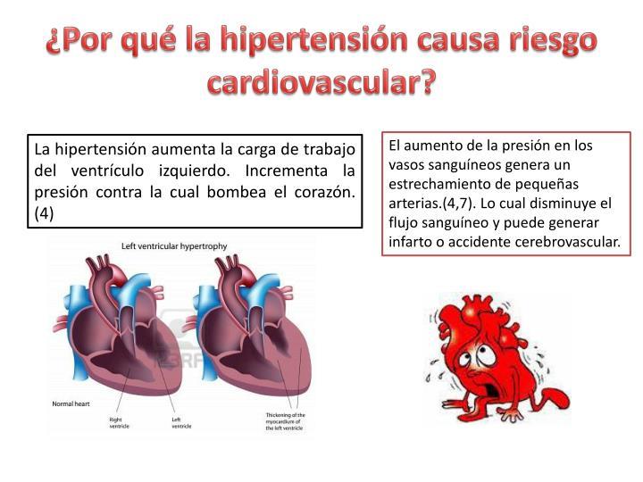 ¿Por qué la hipertensión causa riesgo cardiovascular?