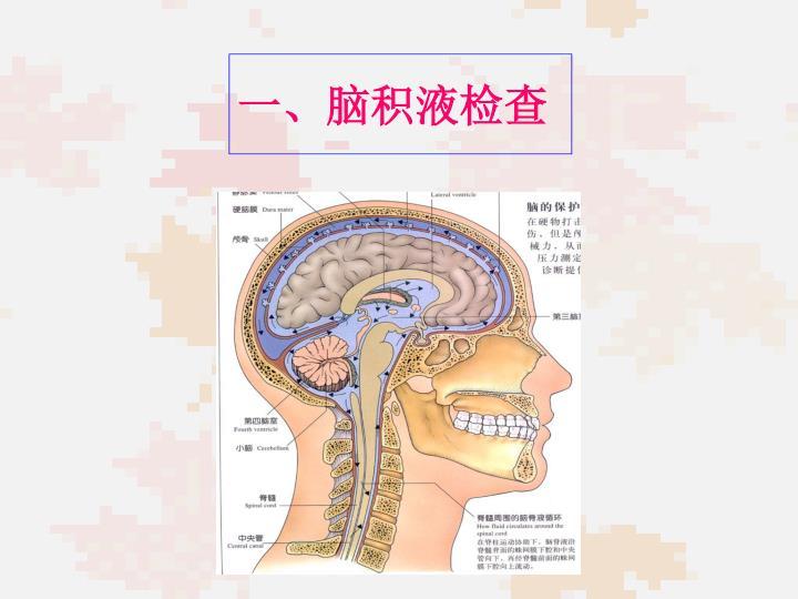 一、脑积液检查