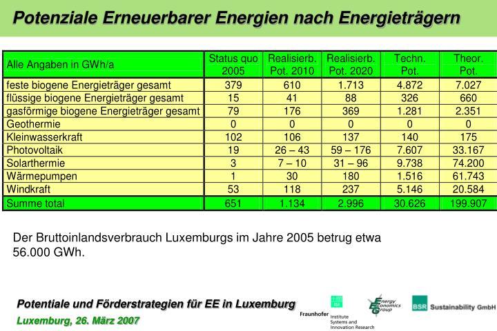 Potenziale Erneuerbarer Energien nach Energieträgern