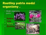 rastliny patria medzi organizmy