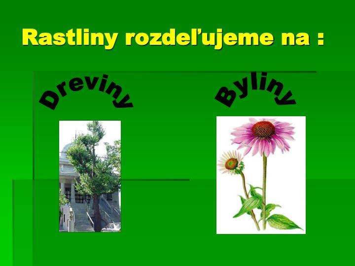 Rastliny rozdeľujeme na