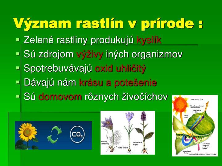 Zelené rastliny produkujú
