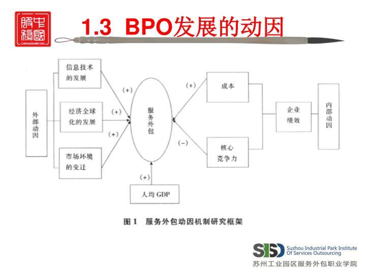 1.3  BPO