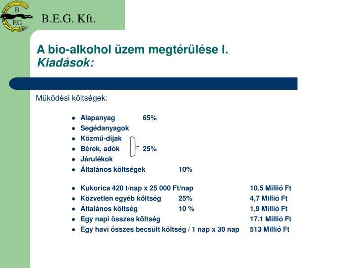 A bio-alkohol üzem megtérülése I.