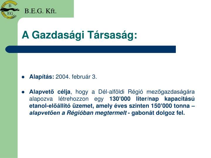 A Gazdasági Társaság: