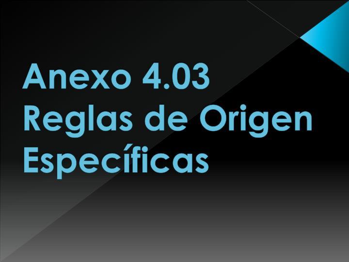 Anexo 4.03