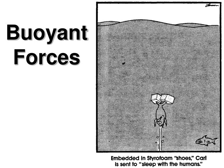 Buoyant Forces