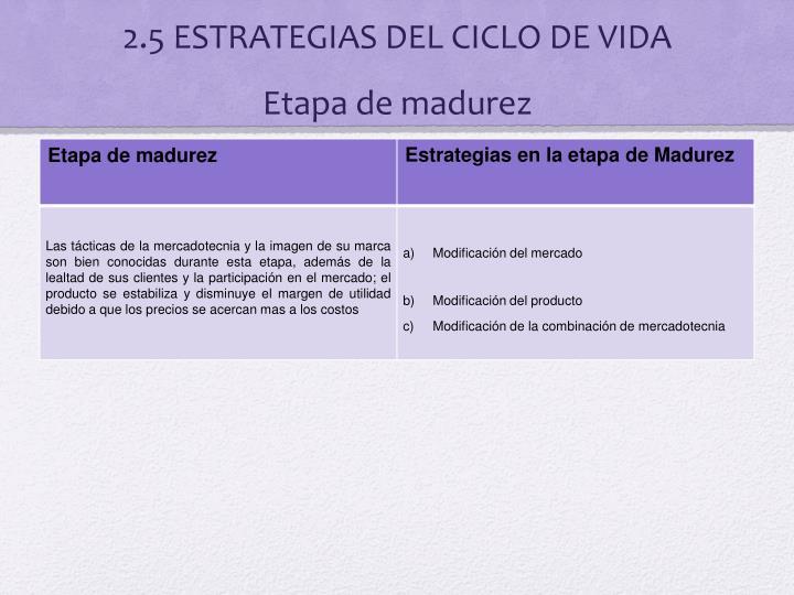 2.5 ESTRATEGIAS DEL CICLO DE VIDA