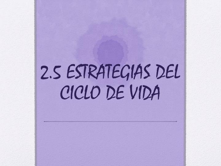 2.5 ESTRATEGIAS DEL CICLO DE