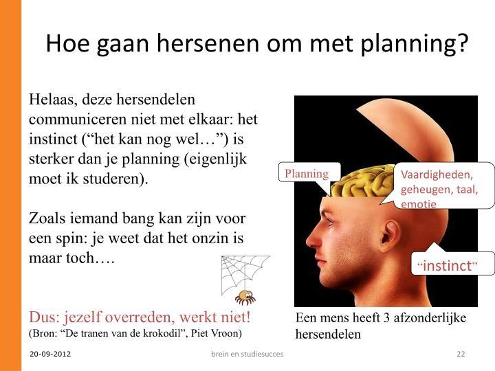 Hoe gaan hersenen om met planning?