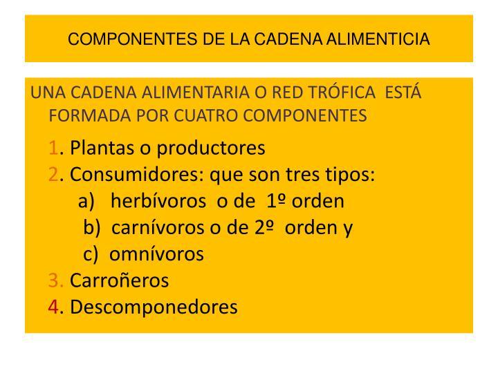 COMPONENTES DE LA CADENA ALIMENTICIA