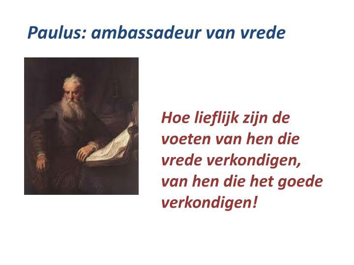 Paulus: ambassadeur van vrede