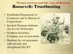 roosevelt trustbusting
