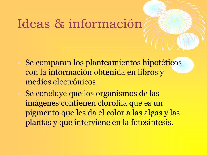 Ideas & información