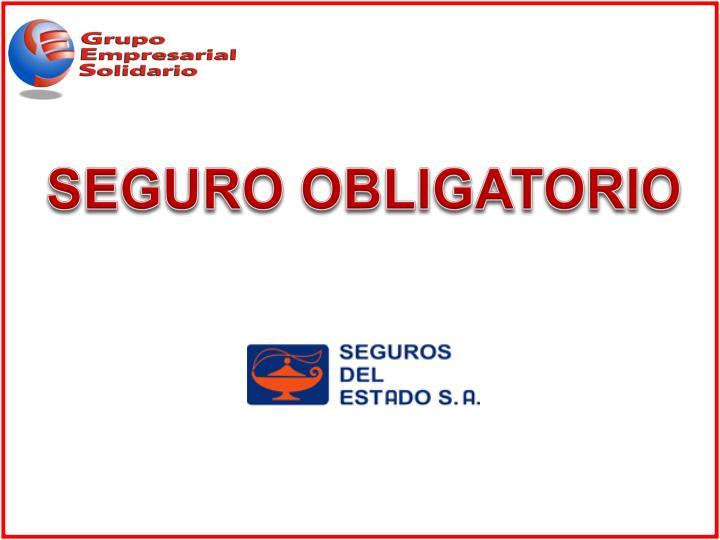SEGURO OBLIGATORIO