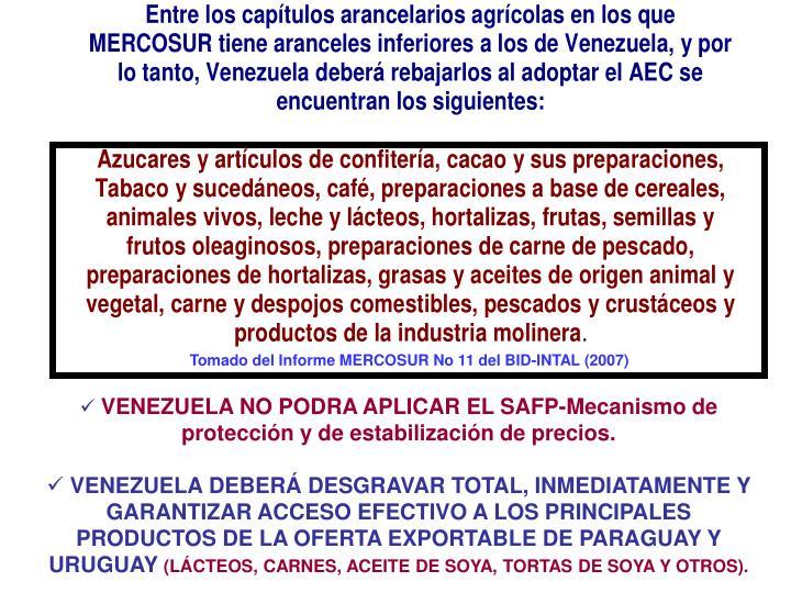Tomado del Informe MERCOSUR No 11 del BID-INTAL (2007)