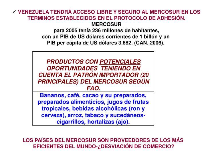VENEZUELA TENDRÁ ACCESO LIBRE Y SEGURO AL MERCOSUR EN LOS