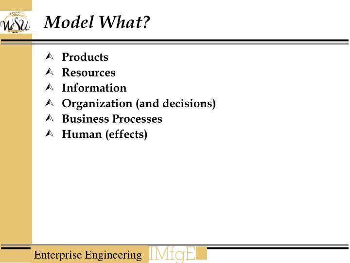 Model What?