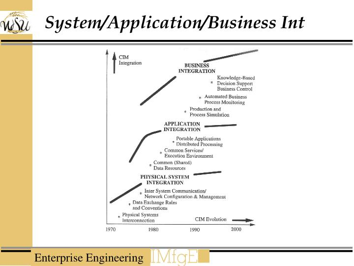 System/Application/Business Int