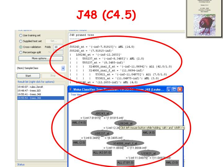 J48 (C4.5)