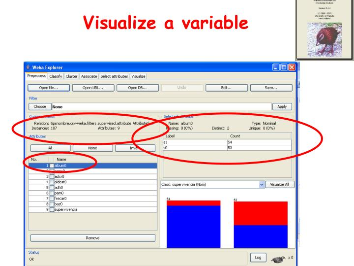 Visualize a variable