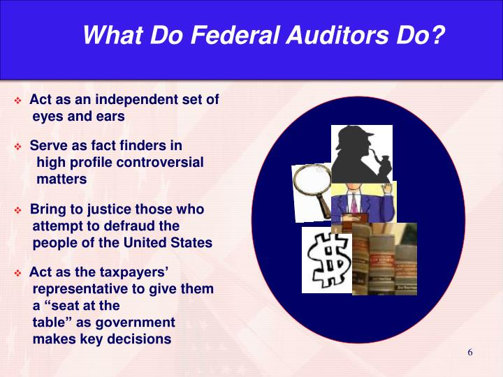 What Do Federal Auditors Do?