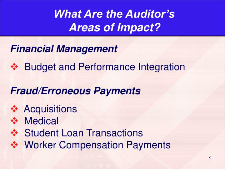 What Are the Auditor's