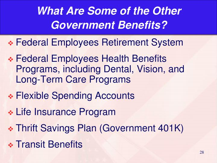 What Are Some of the Other Government Benefits?