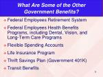 what are some of the other government benefits