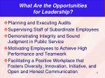what are the opportunities for leadership
