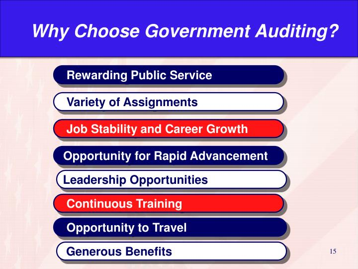 Why Choose Government Auditing?