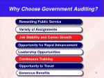 why choose government auditing