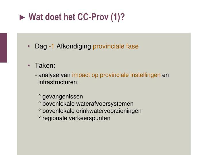 Wat doet het CC-Prov (1)?