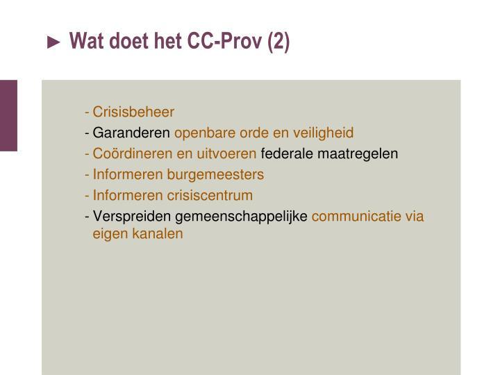 Wat doet het CC-Prov (2)