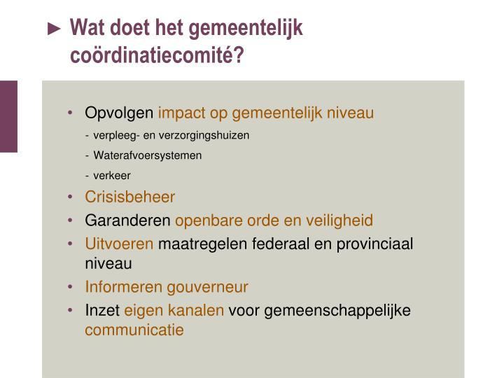 Wat doet het gemeentelijk coördinatiecomité?